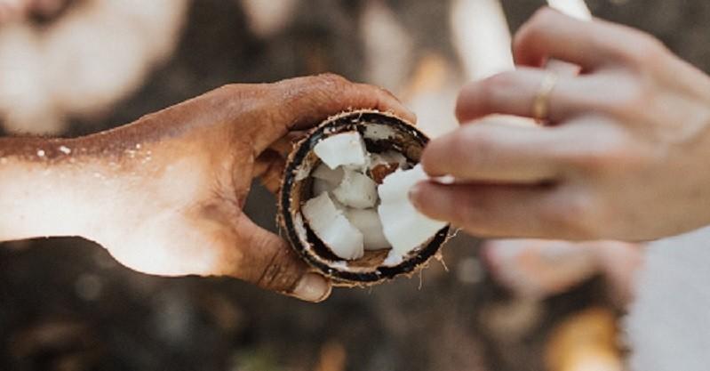 Kokosöl – das Beste der gesättigten Fettsäuren