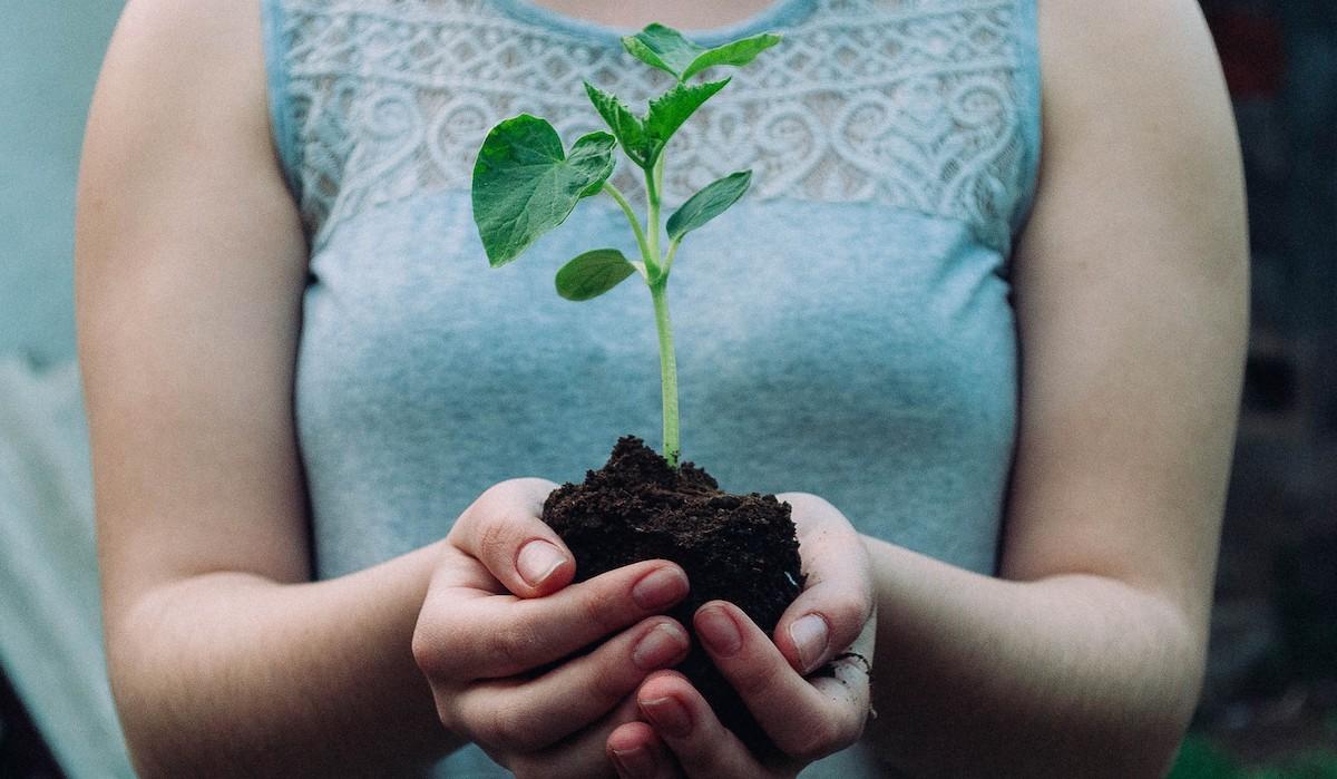 Green is the new black! - 5 Tipps für mehr Nachhaltigkeit in deinem Alltag